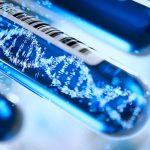Genetische Untersuchung
